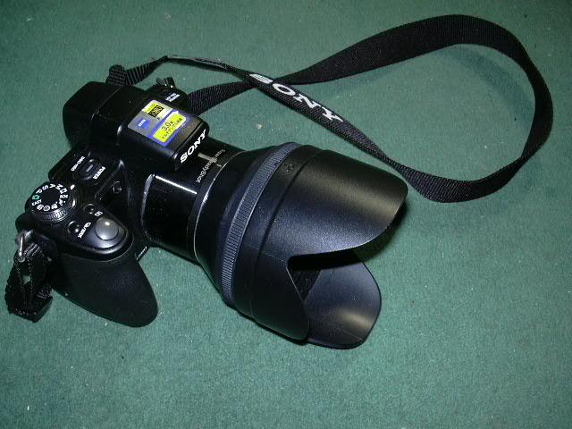 090503DSC-H50No2.jpg
