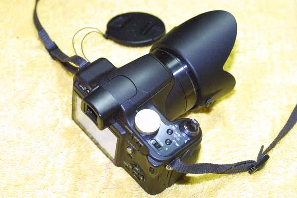 100902FZ28-2.jpg