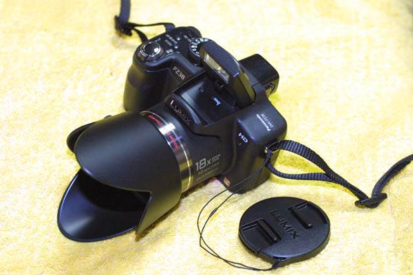 100902FZ38-1.jpg