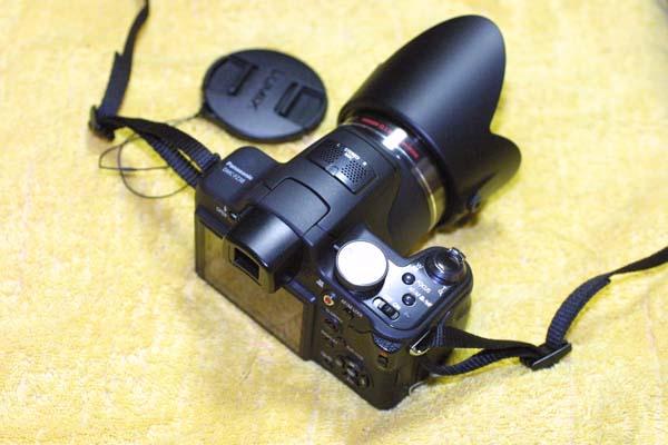100902FZ38-2.jpg