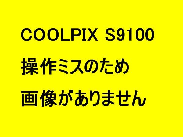 110512miss.jpg